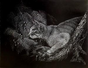 William Boyd Pet Portrait Cat