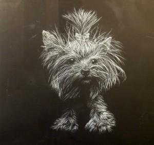 Boyd Pet Portrait Small Dog